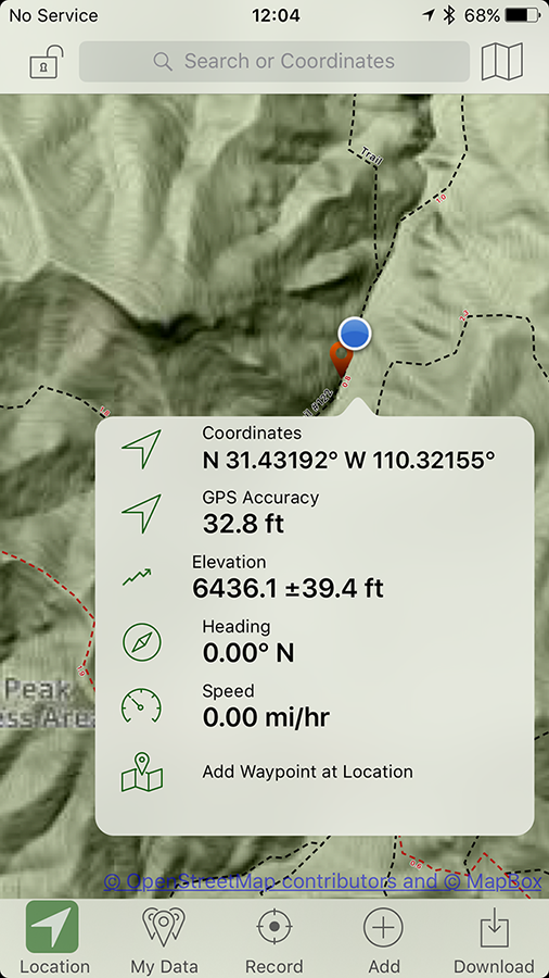 Tufted Flycatcher location