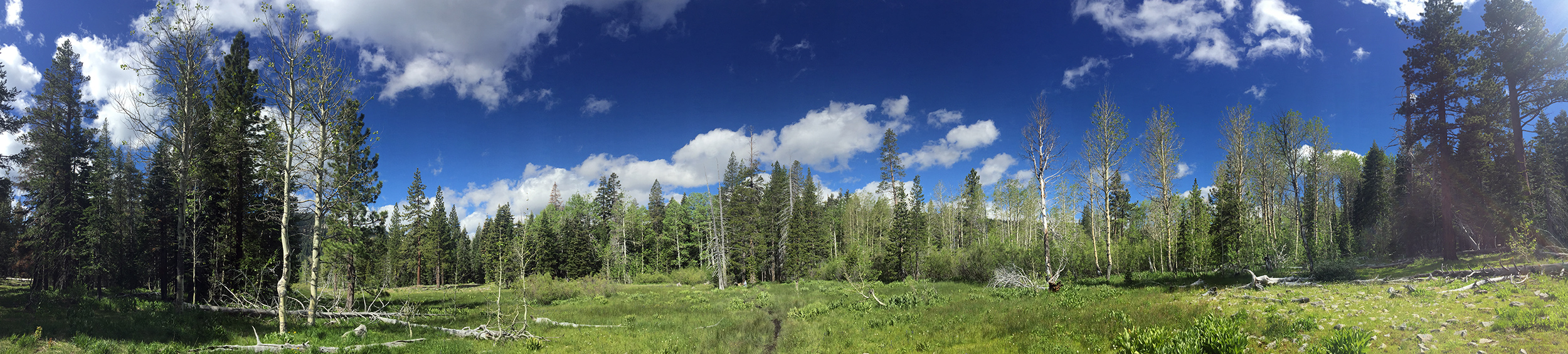 Page Meadows, Lake Tahoe