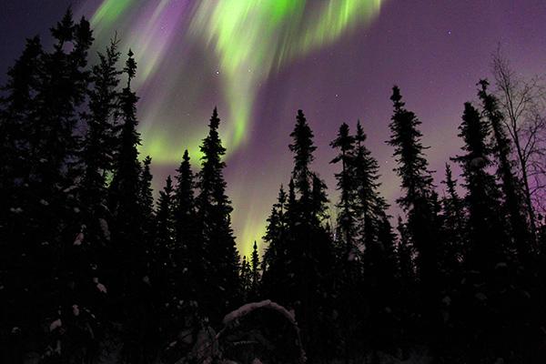 Aurora Borealis @ Chena Wilderness, AK
