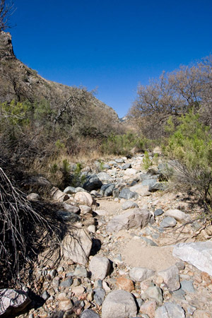 Montosa Canyon